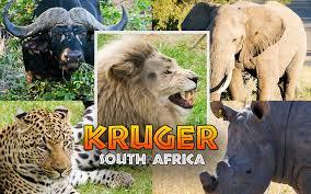 KRUKER S Africa